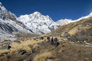 Returning from the highest point on the Annapurna Sanctuary trek